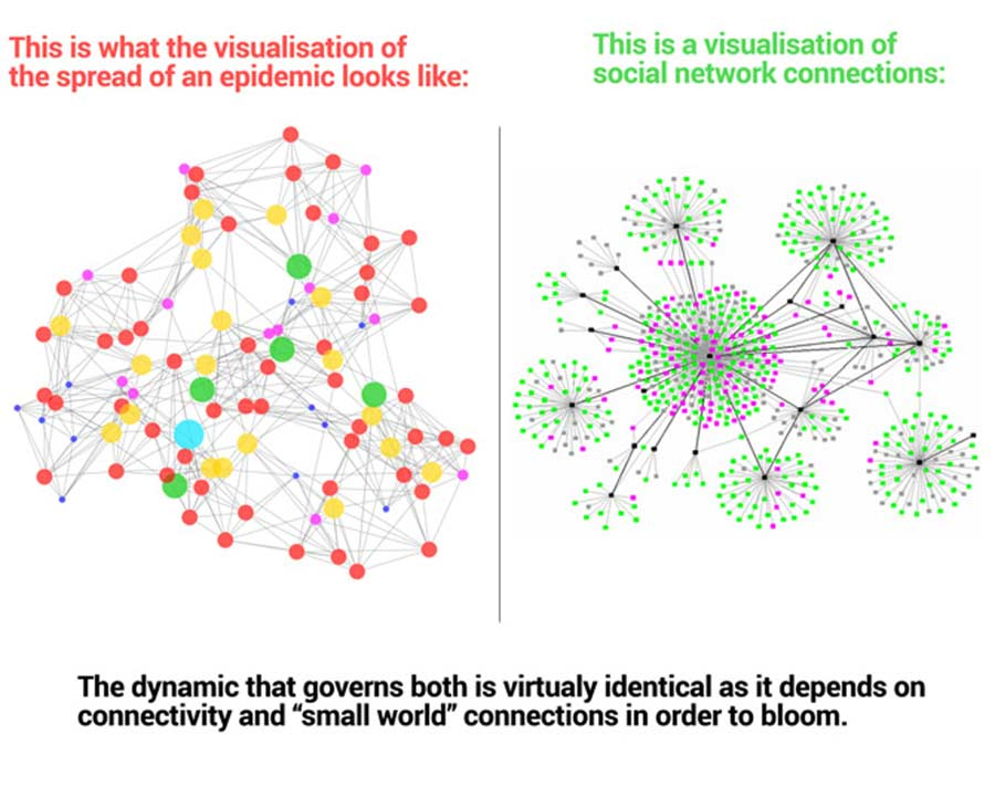 Similarities between the way viruses spread and social networks