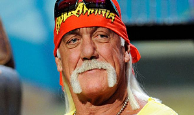 Hulk Hogan Wrestling Megastar and Celebrity